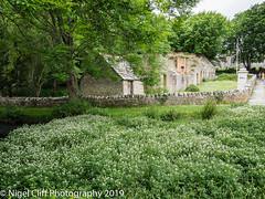 Tyneham 31.05. 201900002 (Nigel Cliff) Tags: corfecastle dorset kimmeridgebay tynehamvillage