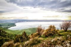 From Above (tagois) Tags: northmacedonia севернамакедонија lakeohrid охридскоезеро galičicanationalpark галичица albania shqipëri