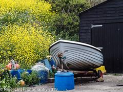 Kimmeridge Bay 31.05. 201900030 (Nigel Cliff) Tags: corfecastle dorset kimmeridgebay tynehamvillage