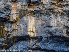 Kimmeridge Bay 31.05. 201900020 (Nigel Cliff) Tags: corfecastle dorset kimmeridgebay tynehamvillage