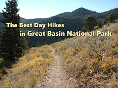 Best Hikes Great Basin (annestravels2) Tags: greatbasinnationalpark nevada autumn fallcolors fall trail mountain pines