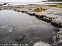 Kimmeridge Bay 31.05. 201900005 (Nigel Cliff) Tags: corfecastle dorset kimmeridgebay tynehamvillage
