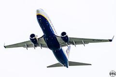 EI-EBW (matt_dvc) Tags: aviation planespotting luton ltn londonlutonairport avgeek bizjets avporn nikon sigma