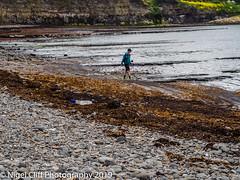 Kimmeridge Bay 31.05. 201900018 (Nigel Cliff) Tags: corfecastle dorset kimmeridgebay tynehamvillage