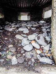 Kimmeridge Bay 31.05. 201900017 (Nigel Cliff) Tags: corfecastle dorset kimmeridgebay tynehamvillage