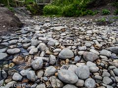 Kimmeridge Bay 31.05. 201900014 (Nigel Cliff) Tags: corfecastle dorset kimmeridgebay tynehamvillage