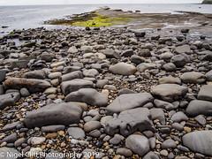 Kimmeridge Bay 31.05. 201900003 (Nigel Cliff) Tags: corfecastle dorset kimmeridgebay tynehamvillage
