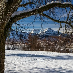 Framed View (ivanstevensphotography) Tags: mountain mountains snow trees switzerlans winter branches
