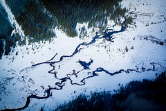 A River Runs Through It (ellieupson) Tags: canada canmore alberta river snow winter aerial helicopter waterway trees banff nationalpark