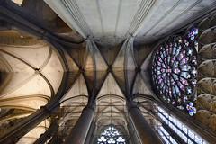 Basilique Saint Nazaire (albireo 2006) Tags: basiliquesaintnazaire gothicarchitecture gothic vault transept carcassonne france