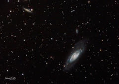 M106 Galaxy June 2019 54X5min=270 min (astrochemist2003) Tags: m106 galaxy astrophotography ngc4217 ngc4231 ngc4232 canes venactici spiral atsion new jersey pixinsight photoshop modified canon d60 rgb