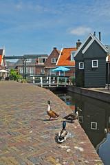 Volendam 010620198 (Tristar1011) Tags: volendam ijsselmeer noordholland nederland holland thenetherlands