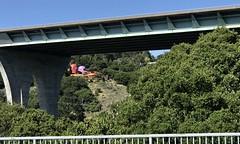 #Walking at #CrystalSprings #SawyerCampTrail (Σταύρος) Tags: williamnicholson freeway280 280 hwy highway freeway flintstonehouse walking crystalsprings sawyercamptrail kalifornien californië kalifornia καλιφόρνια カリフォルニア州 캘리포니아 주 cali californie california northerncalifornia カリフォルニア 加州 калифорния แคลิฟอร์เนีย norcal كاليفورنيا