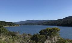 #Walking at #CrystalSprings #SawyerCampTrail (Σταύρος) Tags: crystalspringspark lowercrystalspringsreservoir reservoir crystalspringsreservoir walking crystalsprings sawyercamptrail kalifornien californië kalifornia καλιφόρνια カリフォルニア州 캘리포니아 주 cali californie california northerncalifornia カリフォルニア 加州 калифорния แคลิฟอร์เนีย norcal كاليفورنيا
