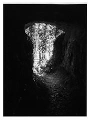 Ins Licht (plastiCtroglodyte) Tags: mamiya film licht fp4 manualfocus wandern höhle ausgang mittelformat streitberg wiesenttal muschelquelle 120 analog ilford fränkischeschweiz schwarzweis 6451000s light blackandwhite monochrome dark hiking cave exit mediumformat