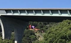 #Walking at #CrystalSprings #SawyerCampTrail (Σταύρος) Tags: crystalspringspark williamnicholson 280freeway 280 hwy highway freeway flintstonehouse walking crystalsprings sawyercamptrail kalifornien californië kalifornia καλιφόρνια カリフォルニア州 캘리포니아 주 cali californie california northerncalifornia カリフォルニア 加州 калифорния แคลิฟอร์เนีย norcal كاليفورنيا