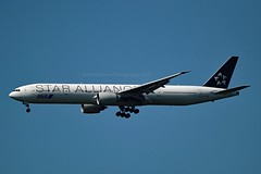 """ANA All Nippon Airways JA731A Boeing 777-381ER cn/28281-488 Painted in """"Star Alliance"""" special colours @ EDDF / FRA 25-05-2019 (Nabil Molinari Photography) Tags: ana all nippon airways ja731a boeing 777381er cn28281488 painted staralliance special colours eddf fra 25052019"""