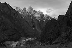 K7, Link Sar and the Charakusa Glacier, Pakistan (Rowan Castle) Tags: k7croppedsilverfx k7 mountain karakoram pakistan asia monochrome blackandwhite silverfx trek canon landscape