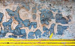 Order To Chaos (jaxxon) Tags: 2019 d610 nikond610 jaxxon jacksoncarson nikon nikkor lens nikon105mmf28gvrmicro nikkor105mmf28gvrmicro 105mmf28gvrmicro 105mmf28 105mm macro micro prime fixed pro abstract abstraction step concrete stair stairs tread surface texture urban decay cracked