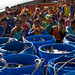 The fruit of hardship from fishers, Phang Nga, Thailand