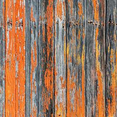 Prevailing Nails (jaxxon) Tags: 2019 d610 nikond610 jaxxon jacksoncarson nikon nikkor lens nikon105mmf28gvrmicro nikkor105mmf28gvrmicro 105mmf28gvrmicro 105mmf28 105mm macro micro prime fixed pro abstract abstraction wood paint peelingpaint distressed weathered boards planks orange nails painted rural decay