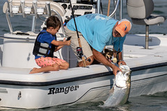Father & Son with Dog & Catch and Release Tarpon (dbadair) Tags: outdoor seaside shore sea sky water nature wildlife 7dm2 7d ii ef100400mm ocean canon florida bird