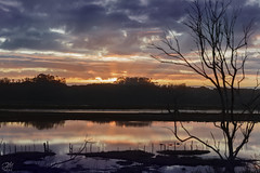 Kirby Beams (amymedina.photoart) Tags: silouhette slough elkhorn kirby reflection water sunset sunbeams rays landscape colorful