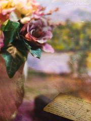 Thursday Still Life (Dave Whiteman - AU) Tags: rose vase letter stilllife brocante texture