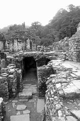A Palace In Ruins (peterkelly) Tags: digital canon 6d northamerica gadventures mayandiscovery mexico chiapas palenquenationalpark palenque lakamha palace ruins stone entrance maya mayan platform wall bw