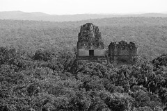 The Jungle Can't Hide Everything (peterkelly) Tags: digital canon 6d northamerica gadventures mayandiscovery guatemala mayan maya ruins pyramid forest jungle tikalnationalpark centralamerica templei templeii stone temple bw