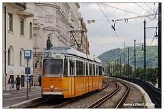 Tram Budapest - 2019-09 (olherfoto) Tags: bahn tram tramcar tramway strasenbahn villamos budapest ganz ungarn hungary bkv