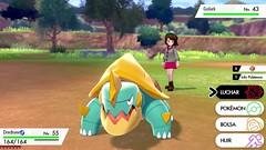 Pokémon-Espada-Escudo-060619-031