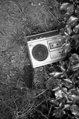 (analogicmoment) Tags: 35mm analogphotography bw bnwfilm pushedfilm kodakfilm trixlovers kodakhc110b olympus35rc rangefinders abandoned filmisbetter filmisnotdead