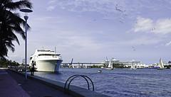 South Channel Navigators. (Aglez the city guy ☺) Tags: sailboat yacht miamisouthchannel downtownmiami exploration urban waterways seashore miamifl miamicity outdoors afternoon bridge brickell park bayfrontpark bayview walkingaround