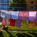 Drying in  Public, Graz