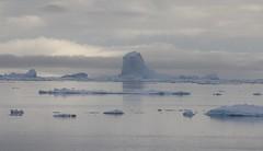 Icebergs in the morning haze (Paul Cottis) Tags: paulcottis 1 february 2019 feb antarctica antarcticpeninsula ice iceberg ocean