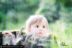 auto-reverse (Mathieu Muller) Tags: outdoor extérieur printemps spring bébé baby kid child enfant boy dof depthoffield minimaldof souche arbre tree stub backlight contrejour mathieumuller wwwmathieumullercom