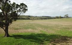 355 Hanleys Creek Road, Dungog NSW