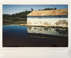 Réflection (Algarve / Portugal). (miroir.photographie) Tags: instaxwide argentique filmisnotdead istillshootfilm algarve portugal analog rf70
