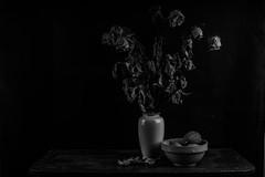 stilleven-9156 (rwscholte) Tags: pentax stilllive blackandwhite bw flowers fullframe flash strobist k1 50mm rwscholte groningen lowkey monochrome phottix