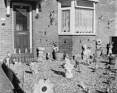 (Attila Pasek (Albums!)) Tags: bronicasqa mediumformat bw film english garden yard analogue england 400 statue delta house dwarf camera blackandwhite sculpture gnome ilford uk 120film