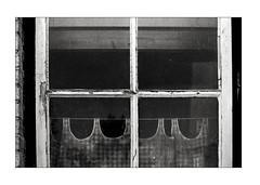 Worn window and old curtains (K.Pihl) Tags: olympusom1 curtain film rodinal1100 kodaktmax400 monochrome window old aarhus standdevelopment pellicolaanalogica schwarzweiss bw worn analog blackwhite