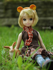 Licca Love (BblinkK) Tags: licca doll tokyo disneyland exclusive daisy duck