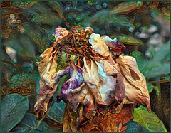 Beautiful Until the End (done by deb) Tags: digitalflowerpainting deepdreamgenerator digitalpainting digitalart brightcolors vividcolor roses deadflowers driedflowers