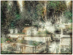 OBF_IPNX66192 (onurbayic) Tags: grave cemetery plant flowers tree marble gravestone istanbul water grass stairway blues epitaph father vintage lifeanddead plants land peace