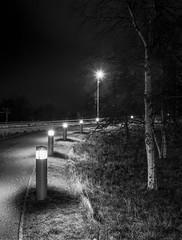 Bike Lane (bnrynlds) Tags: ilford fp4party fp4plus bronica etrsi edinburgh wearecanister