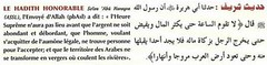 Le hadith sur la fin du monde (Califat islamique) Tags: hadith findumonde france francmaçon monde monarchie monarchiemarocaine califatislamique califat islam islamique dajjal antechrist antichrist chretien évangélique djihad jihad arméeislamique jérusalem alaqsa mosquée paradis musulman mussulmane sourate hajj 2022 2023 soleil roi maroc syaqmerieme