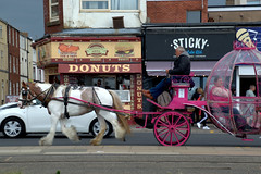 Horse and carriage in Blackpool (Tony Worrall) Tags: blackpool resort place england english north northwest visit county town area northern location lancs lancashire uk fylde fyldecoast coastal tour country welovethenorth nw update attraction open stream item greatbritain britain british gb capture buy stock sell sale outside outdoors caught photo shoot shot picture captured ilobsterit instragram horseandcart horse carriage travel ornate ride transport street road pay