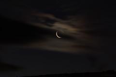 always a moon (11) (birdcloud1) Tags: moon luna sky clouds crescent glow travellinglight faithleaping night canoneos80d eos80d canon70300mm 70300mmlens amandakeoghphotography amandakeogh birdcloud1 happilyfreefromfencesfriday alwaysamoon
