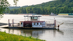 Evening on the Ohio River (SL&S) Tags: kentucky ohioriver ohio cincinnati ferry andersonferry river boats nikon nikonz6 nikon70300vr ftz ftzadapter